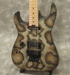 Charvel/Custom Shop -Warren DeMartini Signature- SNAKE/LeftHand